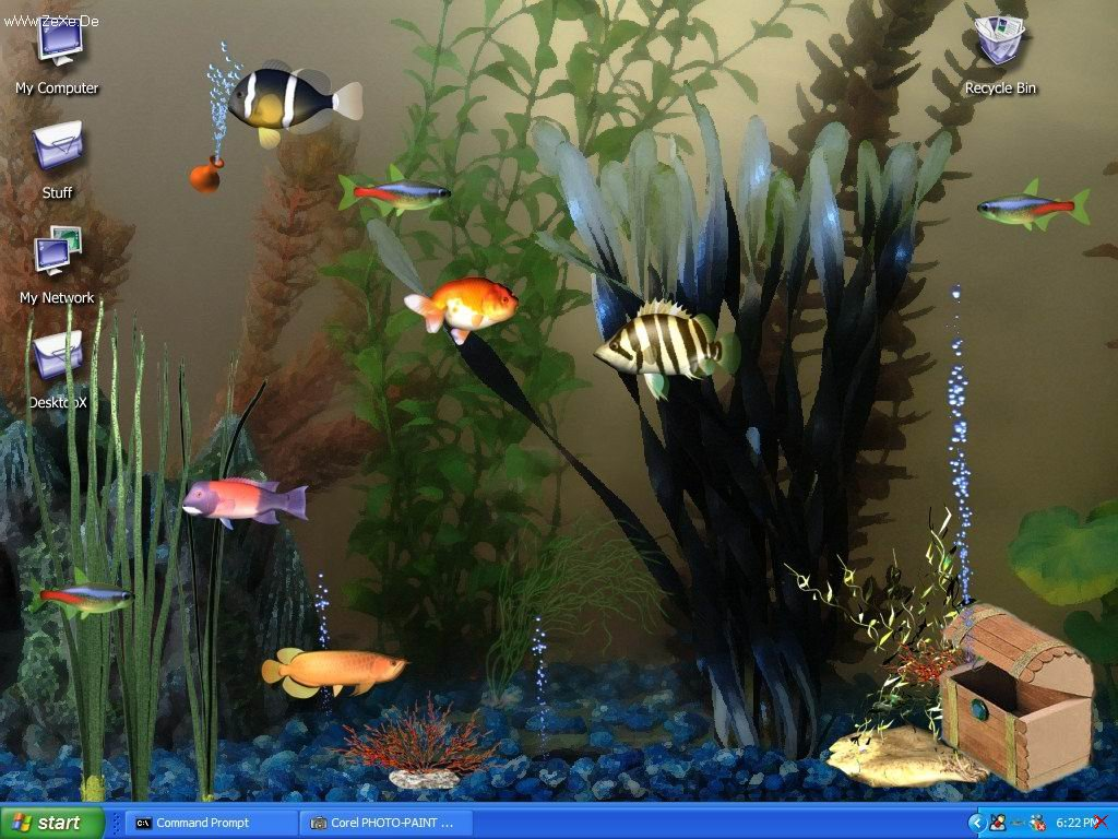 Aquarium Desktop.