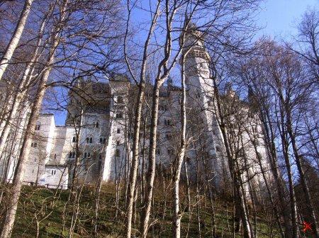 Ostallgäu, Bavaria, Germany..Я Сам снимал...