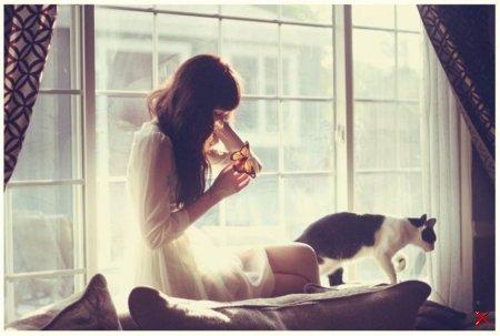 Девушки и Коты  ( Много фото )