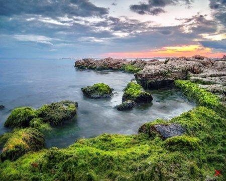 Побережье Черного моря, Свети-Влас, Болгария