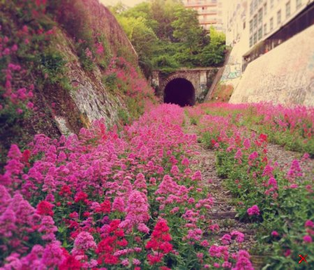 Железная дорога Petite Ceinture, Франция