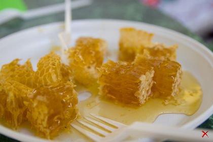 О чудодейственных свойствах меда