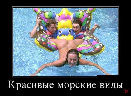Подборка лучших смешных фоток демотиваторов